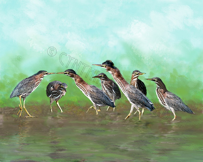 Green Heron Games