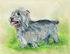Glen of Imaal Terrier.pastel.jpg